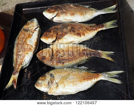 Fresh whole fish being grilled on a barbecue