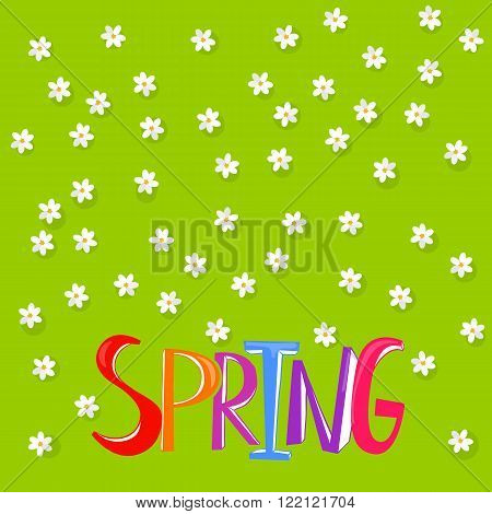 Spring Time lettering on background with flowers. Spring cute floral background. Spring flowers background. Top view of green field with flowers pattern. Colorful letters spring header
