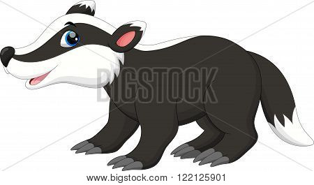 Vector illustration of cute badger cartoon  isolated on white background