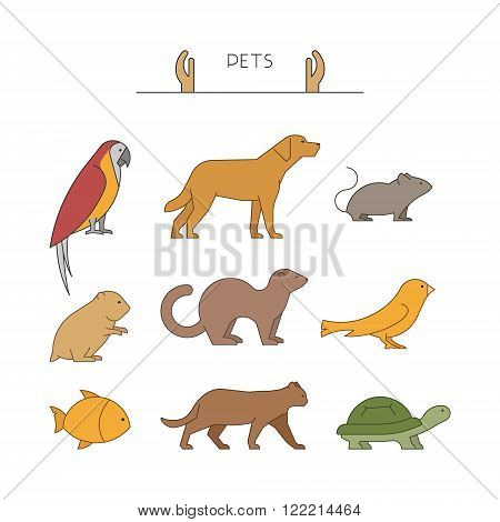 Outline set of pets. Linear silhouettes animals isolated on white. Line group of pets. Vector icons parrot dog mouse and hamster. Outline silhouette hamsters canaries cats and turtles.