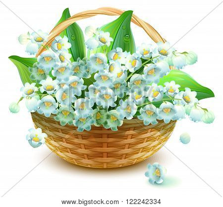 Wicker Basket of flowers. Flower lily valley. Bouquet lily of valley. Isolated on white vector illustration