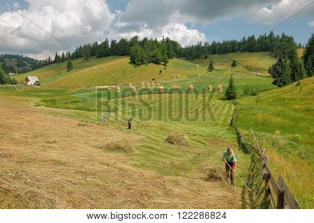 GARDA DE SUS, ROMANIA - AUGUST 04, 2015: rural landscape with farmers are working on the field in Apuseni Mountains