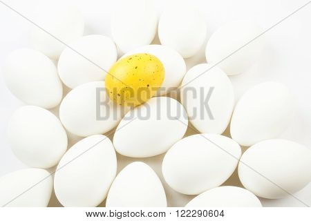 One spotted yellow egg among a group of bleached white eggs.