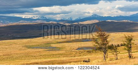 gorgeous panorama view of chilean pampas in patagonia