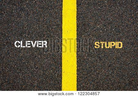 Antonym Concept Of Clever Versus Stupid