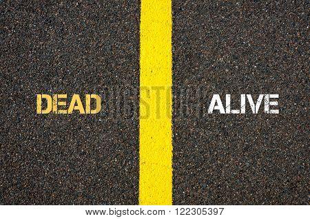 Antonym Concept Of Dead Versus Alive