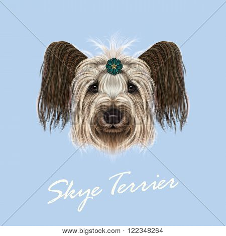 Cute face of dog on blue background.