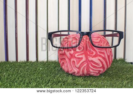 Brain on a grass with glasses and book