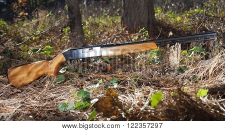 Rimfire weapon that is on the forest floor