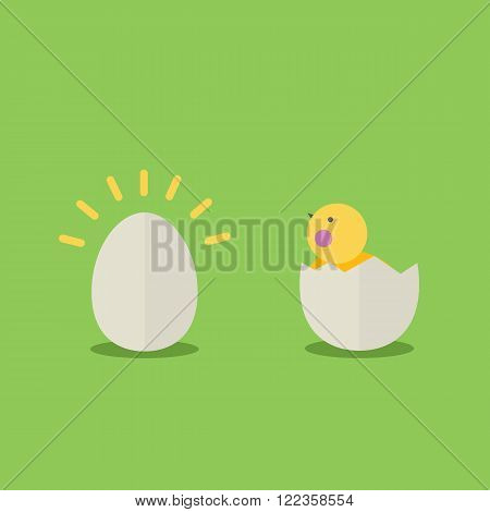 Cute cartoon little chicken in egg shell and egg .Cartoon little chicken vector bird flat style.Chicken bird isolated on background.Farm bird.Vector Cute Chicken character farm animal bird.Farm bird