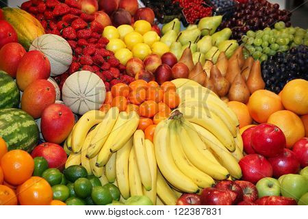 Big Assortment Of Fresh Organic Fruits