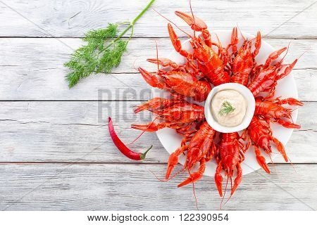 Boiled red crayfishes on a white dish