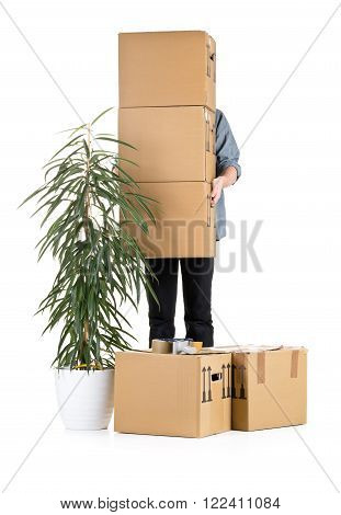 Man lifting moving carton boxes with plant over white background