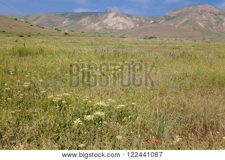 Grey mountains and green meadow in Crimea
