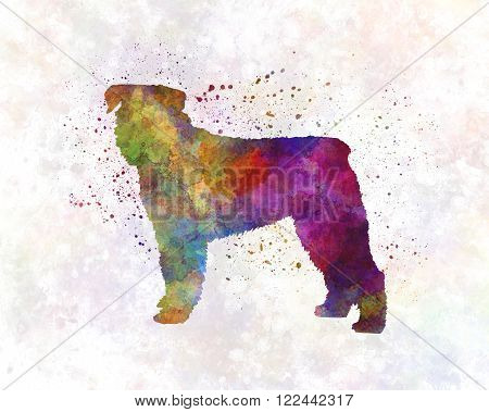 Bouvier Des Flandes in artistic abstract watercolor background