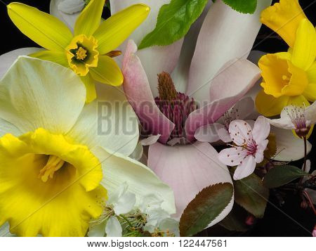 bouquet of spring blossoms in different colours