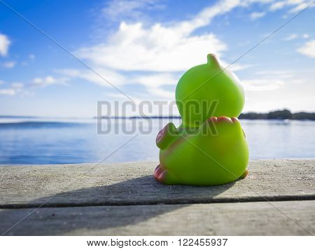 Green rubber duck longing for sea in Southern Finland