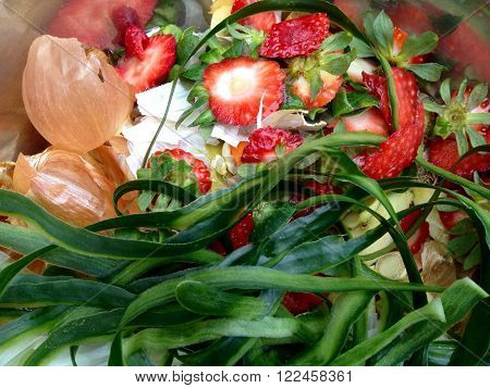 Fresh biowaste with strawberries and cucumber for composting