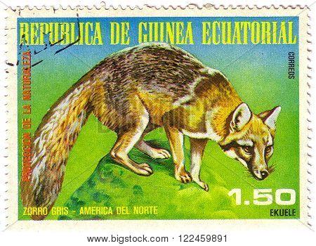 Equatorial Guinea - Circa 1977: A Stamp Sheet Printed In Equatorial Guinea Shows Zorro Gris, A Colle
