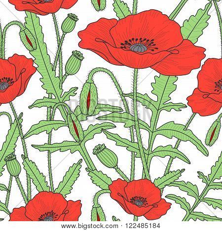 Elegant Floral Seamless Pattern With Poppy Flowers