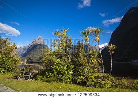 Mitre Peak in Milford Sound New Zealand South Island