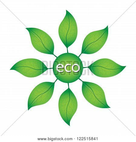 Ecological or environmental concept. Green leaves in a circle with ECO text on a white background.