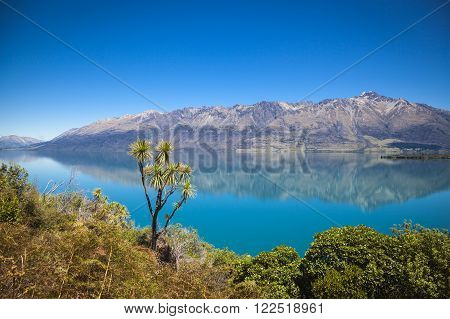 Along The Shores Of Lake Wakatipu