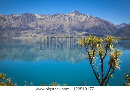 Along the shores of Lake Wakatipu New Zealand