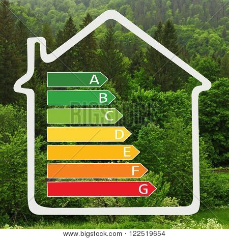 House with energy efficiency scale image on green forest background