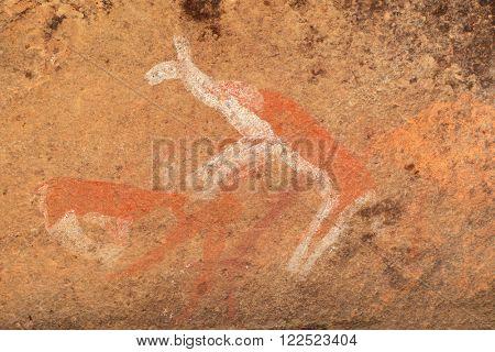 Bushmen (san) rock painting of antelopes, Drakensberg mountains, South Africa