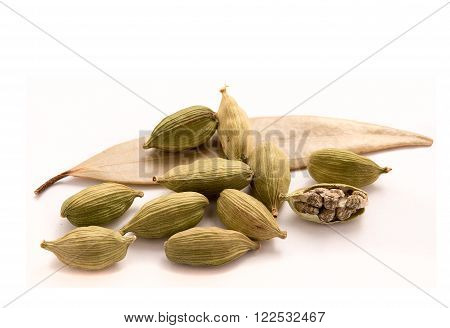 fresh Cardamon pods isolated on white background