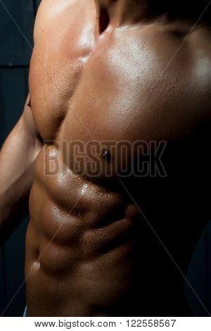 Sexy Male Sensual Bare Torso