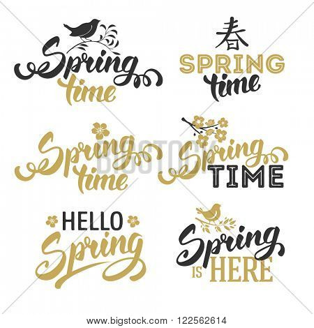 Spring Typographical Lettering Designs Set. Text Spring Time. Hello Spring. Spring Calligraphic Design. Overlays on Spring Theme. Isolated on White Background. Vector Illustration.