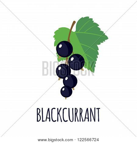 Blackcurrant in flat style. Blackcurrant vector logo. Blackcurrant icon. Isolated object. Natural food. Vector illustration. Blackcurrant on white background