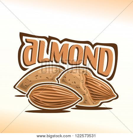 Vector illustration on the theme of the logo for almond nuts, consisting of peeled almond nutlet and two nuts in the nutshell