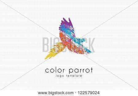 Parrot logo design. Color parrot. Bird logo. Exotic logo.