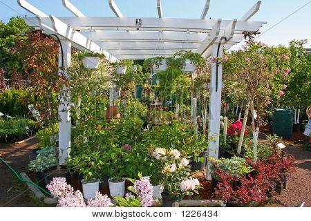 Garden Center 2