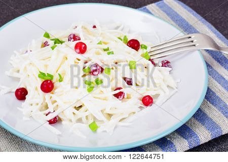 Dietary Salad from Daikon and Cranberry  Health Food. Studio Photo