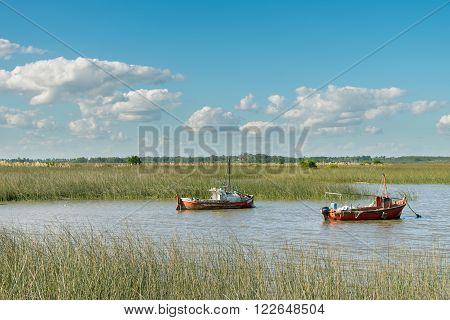 Enjoying the afternoon at the Santa Lucia wetlands. Santa Lucia, Santiago Vazquez, Montevideo, Uruguay.