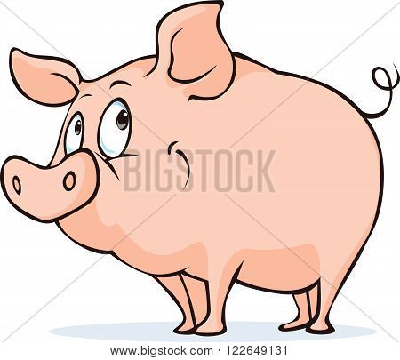 cute vector pig isolated on white background