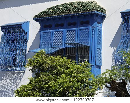 the village of sidi bou said near tunur