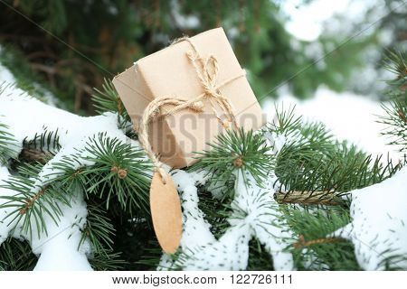 Christmas gift on a snowy fir tree branches