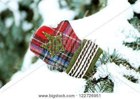 Little mitten on a snowy fir tree branch