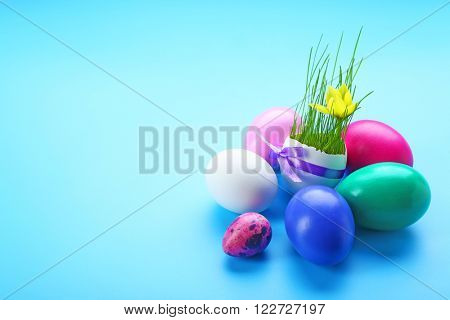 Easter eggs with yellow flower on blue background