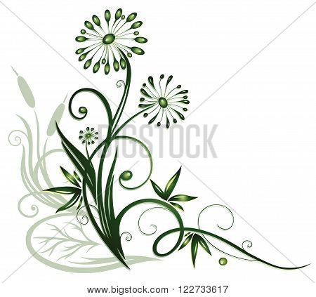 Colorful floral vector design, reed and flowers.