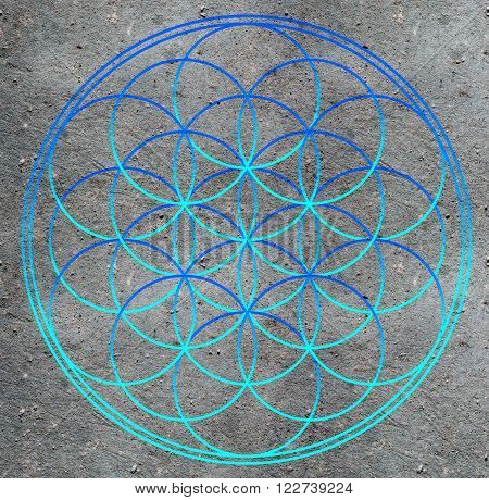 Flower of life , sacred geometry - symbol harmony and balance