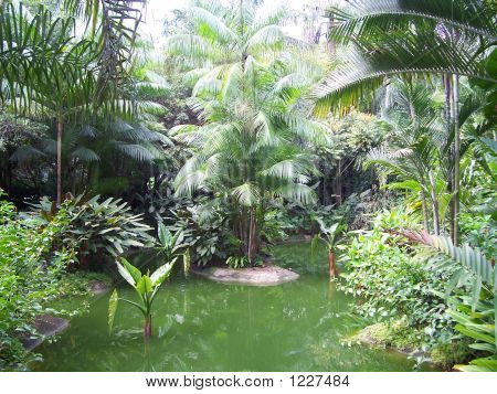 Botanical Gardens In Singapore