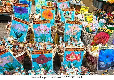 AMSTERDAM-APRIL 28: Local shop inside a row of floating barges offers bulbs on the Amsterdam Flower Market on April 282015.The Flower market is one of Amsterdam most colourful attractions.