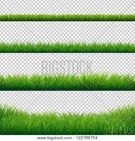 Green Grass Borders Set, Vector Illustration