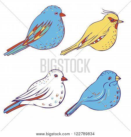 vector hand drawn birds, isolated songbirds, hand drawn vector elements